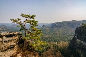 Foto Aussicht vom Unteren Fremdenweg am Kleinen Winterberg