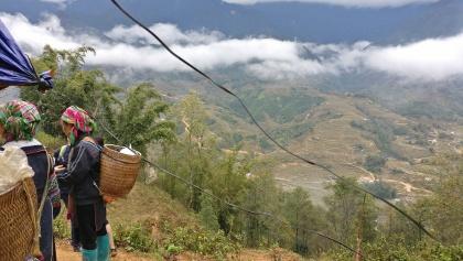 Die nebelverhangenen Reisterrassen von Sa Pa