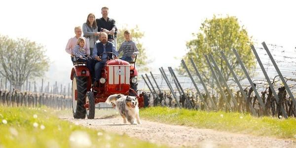 Weingut Gries, Traktor