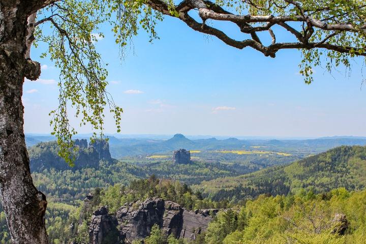 Foto Schöne Aussicht von der Oberen Affensteinpromenade zum Falkenstein und zu den Schrammsteinen