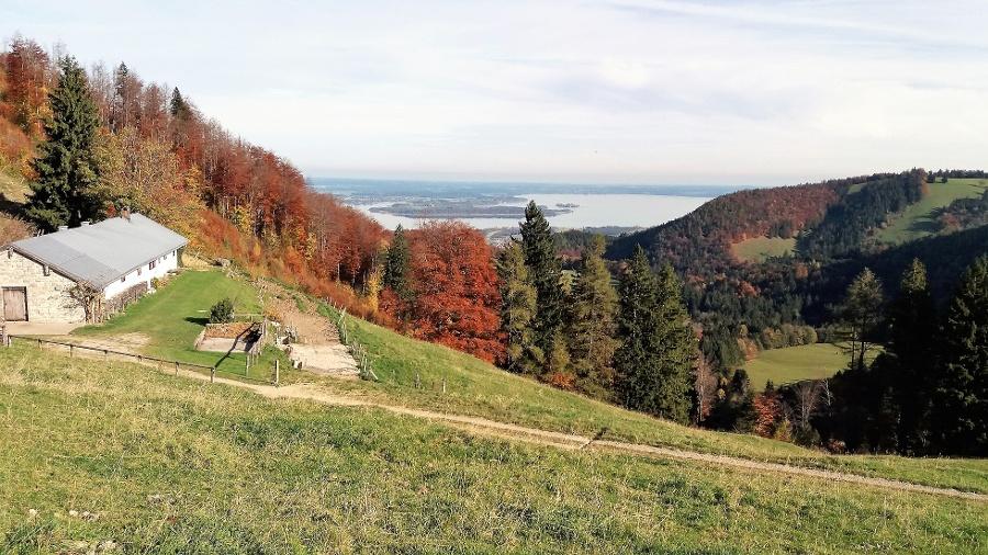 Blick auf Sameralm-©Quelle: Gemeinde Bernau a. Chiemsee