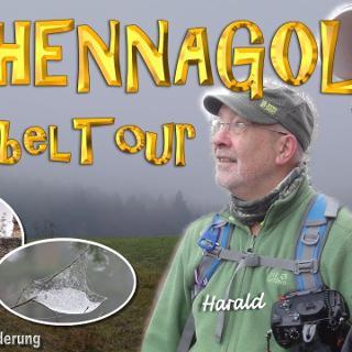 HOHENNAGOLD - Nebeltour   OVOT-Wanderung