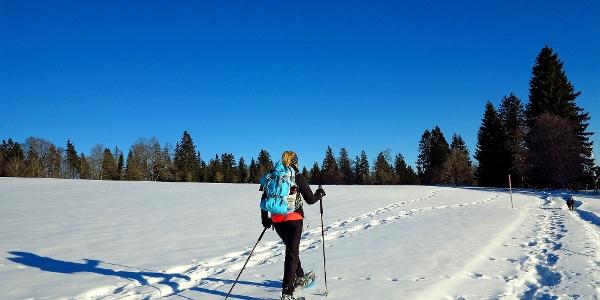 Schneeschuhwandern auf dem Mont Soleil.