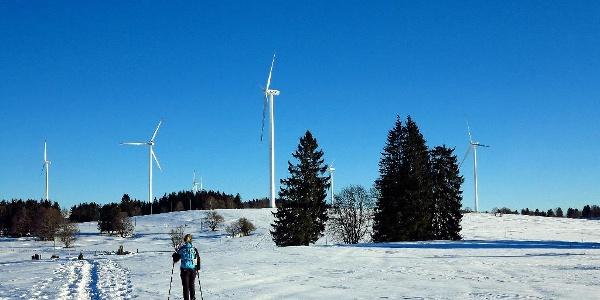 Dem Windpark auf dem Mont Crosin entgegen.