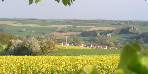 Blick auf Mauschbach