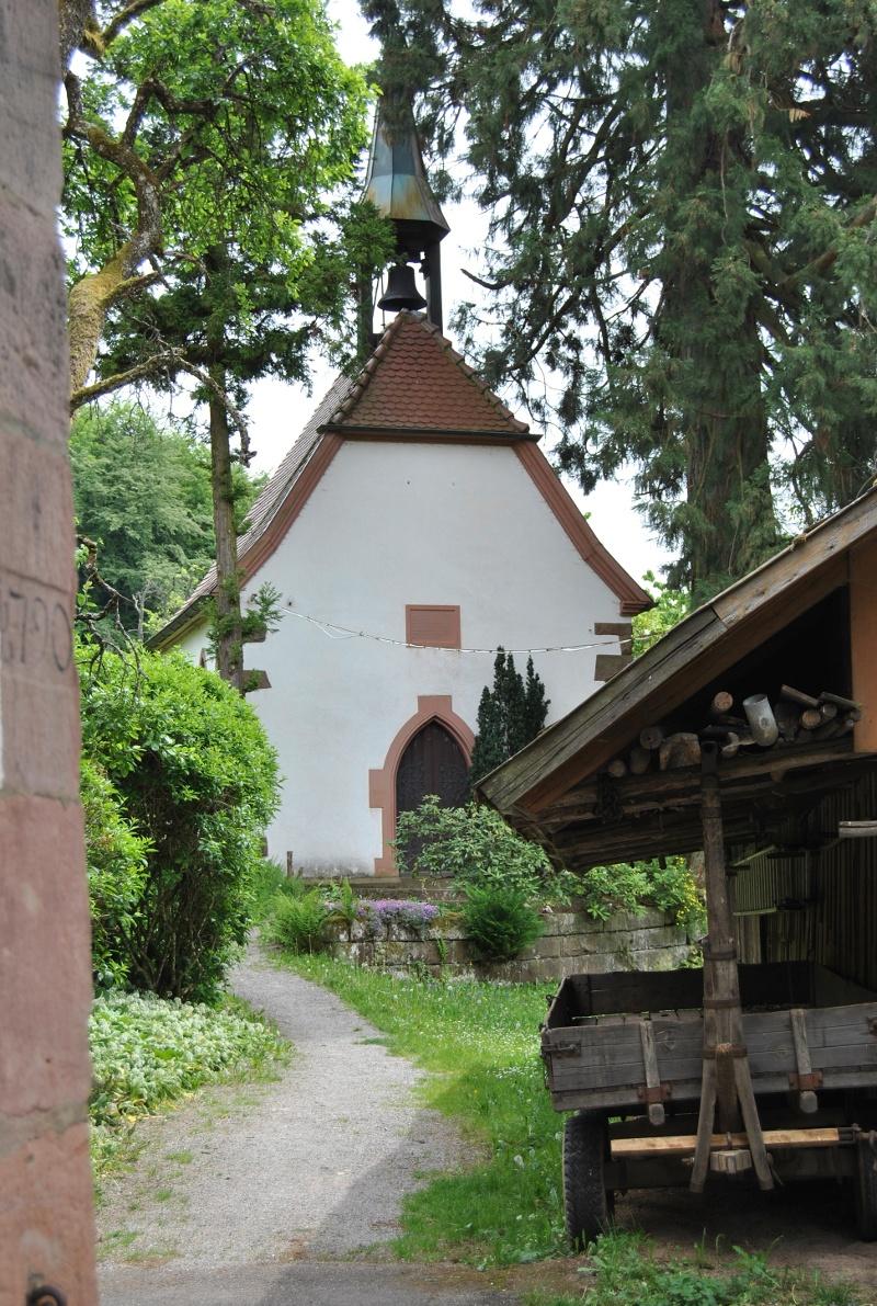 Nordrach - Nordic-Walking-Tour Nr. 3: Flacken-Rundweg