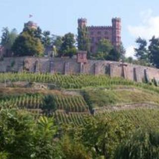 Ortenbergerschloss