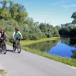 Genussvolles Radfahren entland der Rheinauen
