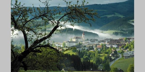 Blick über Birkfeld