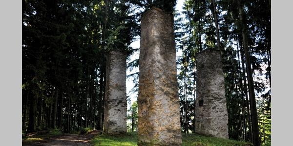 Galgenwald