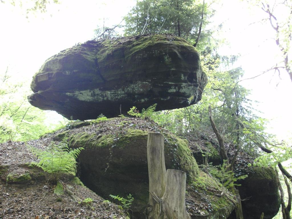 Igelfelsen Kastel-Staadt (2)