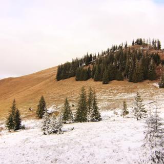 Um Die Reuterwanne Mit Gipfelabstecher Wanderung Outdooractive Com