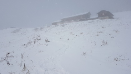 Kurz vor dem Brauneck-Gipfelhaus bei 1500 m.