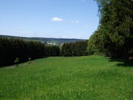Blick auf Reinsfeld(Foto: Claudia Fuchs, Quelle: Tourist-Information Hermeskeil)