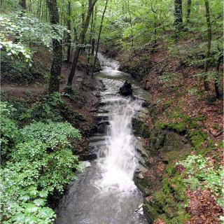 Patensteig Kaskaden im Rickbachtal