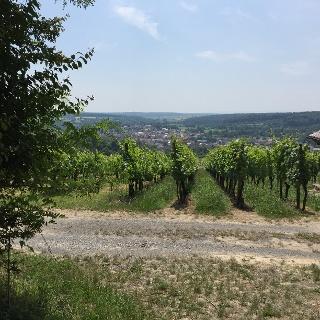 Bruchsal Obergrombach
