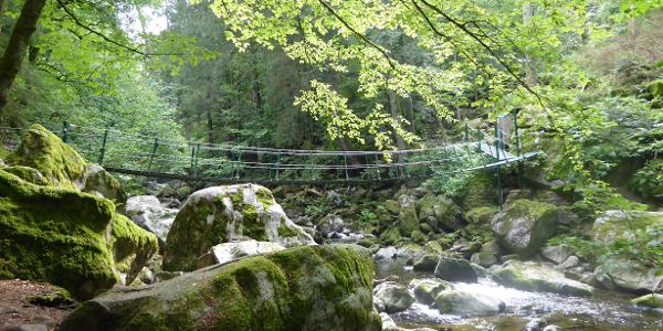 Buchberger Leite - Hängebrücke