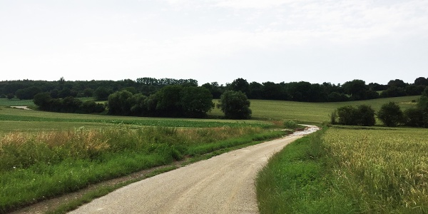 Bruchsal Rohrbachtal