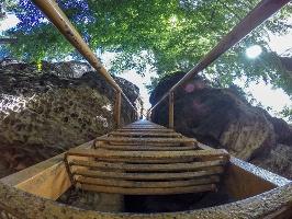 Foto Die lange und steile Leiter im unteren Teil der Sachsenstein-Stiege