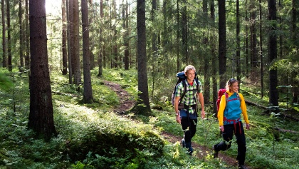Wanderung in Trollskog