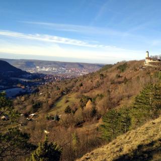 am Rastplatz über dem Ziegenhainer Tal, mit einer der schönsten Sichten zum Turm