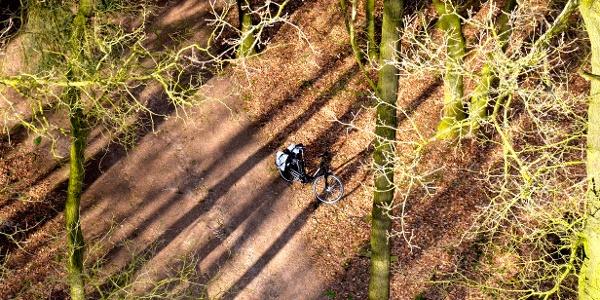 Luftaufnahme vom Pickerweg