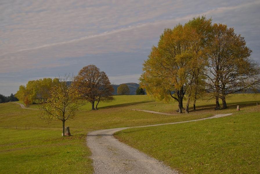 Rundtour über Bernbach (KONUS)