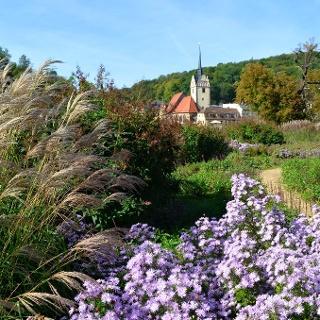 Blick vom Hofwiesenpark zur Kirche