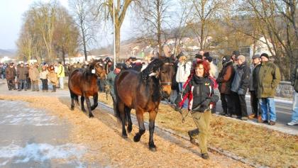 Pferdemarkt Creglingen- Prämierung