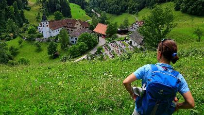 Blick auf Kloster Beinwil.