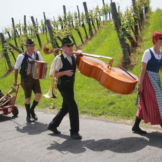 Musik im Weingarten