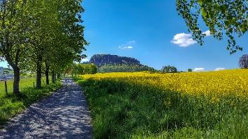 Foto Auf dem Weg zum Pfaffenstein