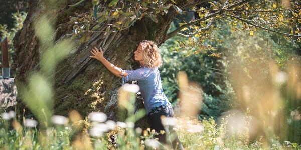 Abbraccio agli alberi al castagneto di Carisolo