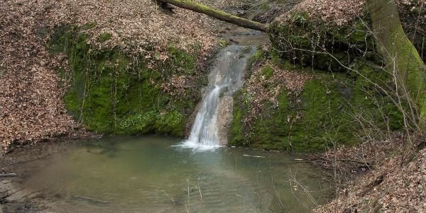 Apró tavacskát duzzasztó vízesés a Csepegő-árok végén