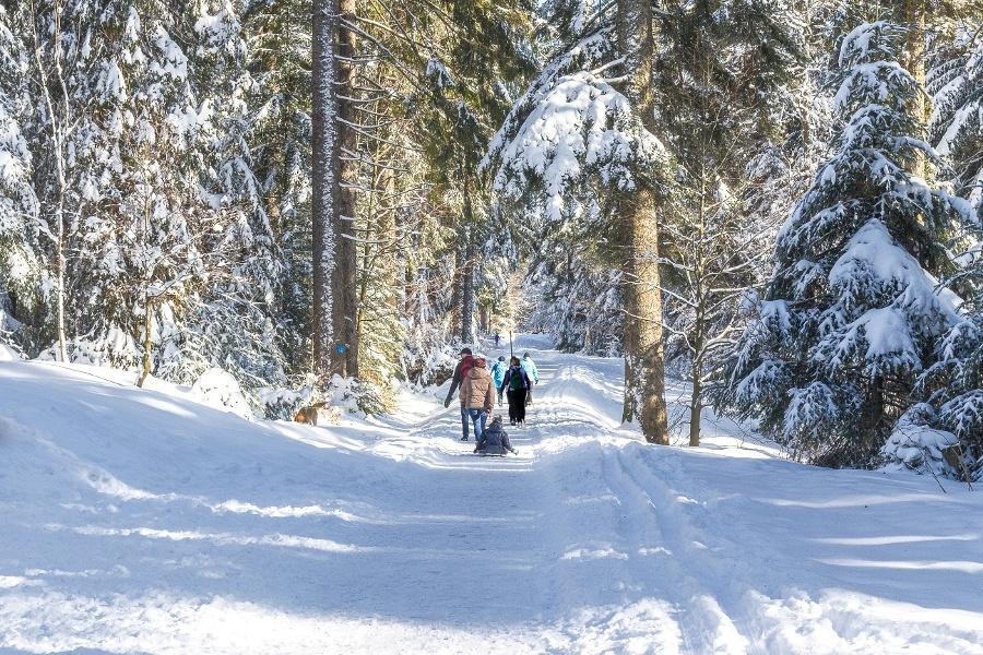 Winterwanderung von Freudenstadt über den Kienberg nach Kniebis