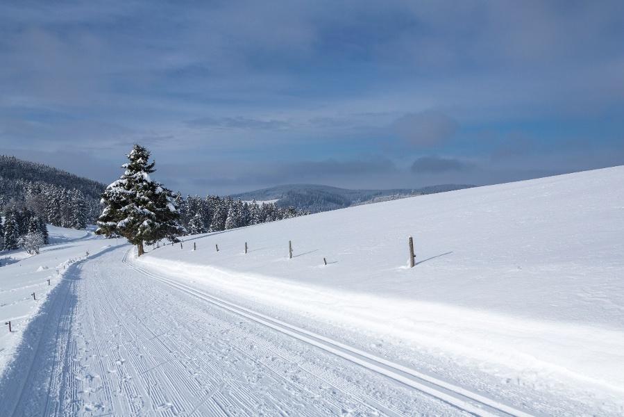 Hochberg Spur