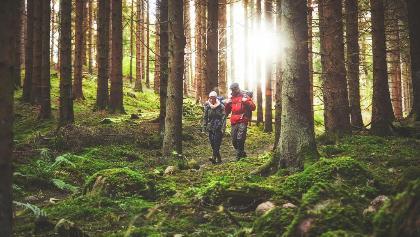John Bauer Trail, Småland