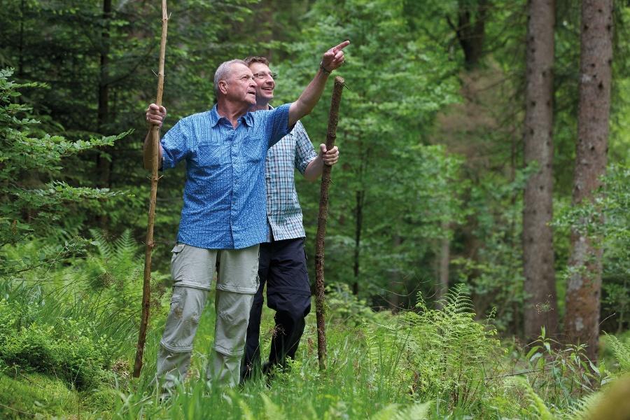 10 Forellenbach-Tour, Wanderglück Schömberg