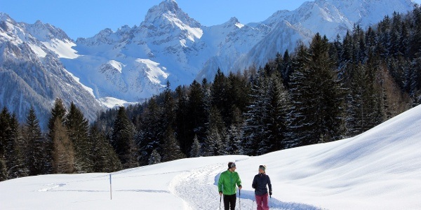 Beim Winterwandern die herrliche Winterlandschaft genießen!