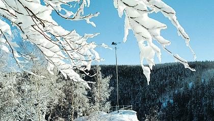 Katzenstein in Pobershau