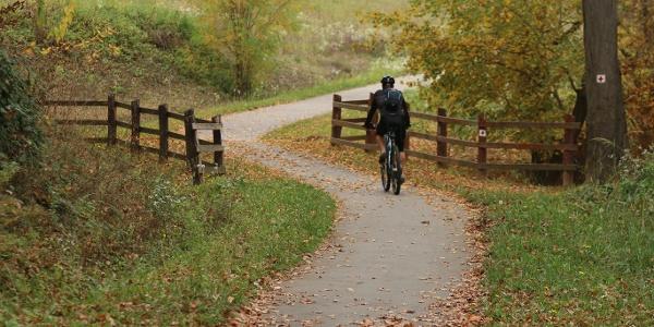 A Deseda-tó partján végigvezet a kerékpárút