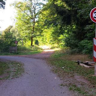 Grenzübergang mitten im Wald