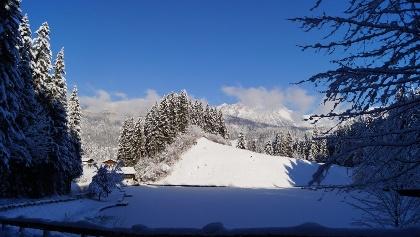 Moorsee Winter