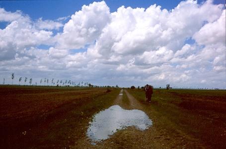 Camino vor Fuente del Hospitalero