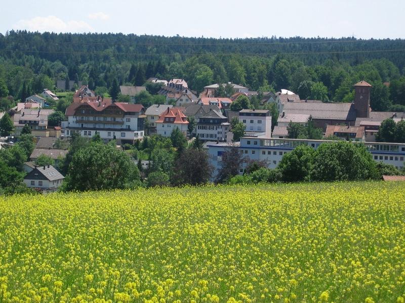 2 Eulenbächle-Wanderung, Wanderglück Schömberg