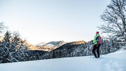 Schneeschuhwandern im Naturpark Mürzer Oberland