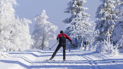 Skifahrer in der Loipe