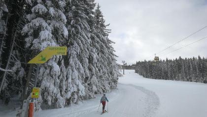 Ausgangspunkt: Talstation Gipfelbahn Hochwurzen
