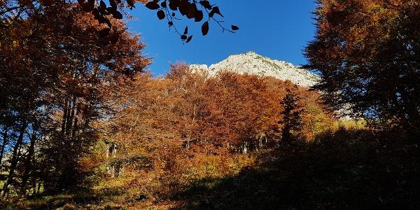 Herbst! Die beste Wanderzeit im Jahr und für mich die Schönste!