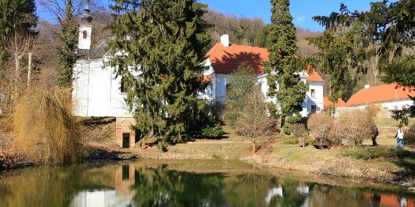 A püspökszentlászlói arborétum kis tavacskája, háttérben a felújított püspöki kastély